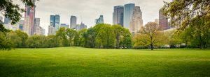 Quels sont les enjeux de développement durable pour l'immobilier ?