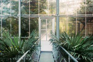 Biodiversité, biophilie & biomimétisme : Retour sur l'Atelier OID et Paris & Co du 4 juillet 2019